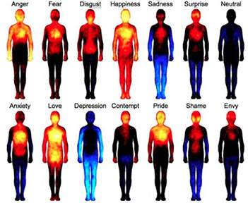 CT scan images showing the difference between various human moods such as anxiety, love, depression, anger, and happiness.